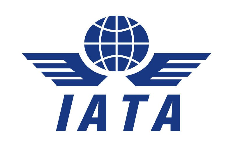 Organizatiile internationale de turism-IATA