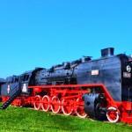 Cu mocanita pe Valea Vaserului-Carpatia Express