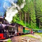 Cu mocanita pe Valea Vaserului-locomotiva cu abur