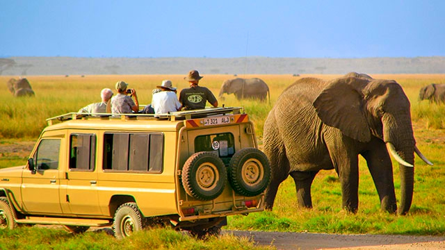 Serengeti National Park-Tanzania-safari