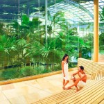 Spa Bucuresti-Therme-sauna