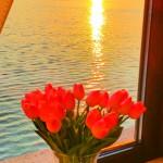 Vanilla Residence Mamaia-living sunset